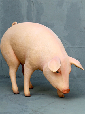 Pink Pig with head Down