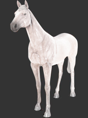 Standing Horse/White